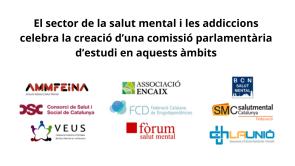 El sector de la salut mental i les addiccions celebra la creació d'una comissió parlamentària d'estudi en aquests àmbits